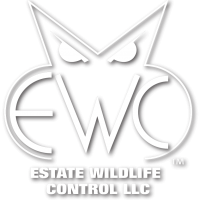 Estate Wildlife Control LLC